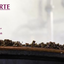 "DISTILLERIE APERTE 2017:  VISITE GUIDATE, ""GRAPPA & COCKTAIL"" E OMAGGIO ALLA FICTION ""DI PADRE IN FIGLIA"""